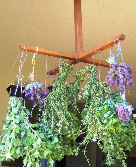herbs-to-dry