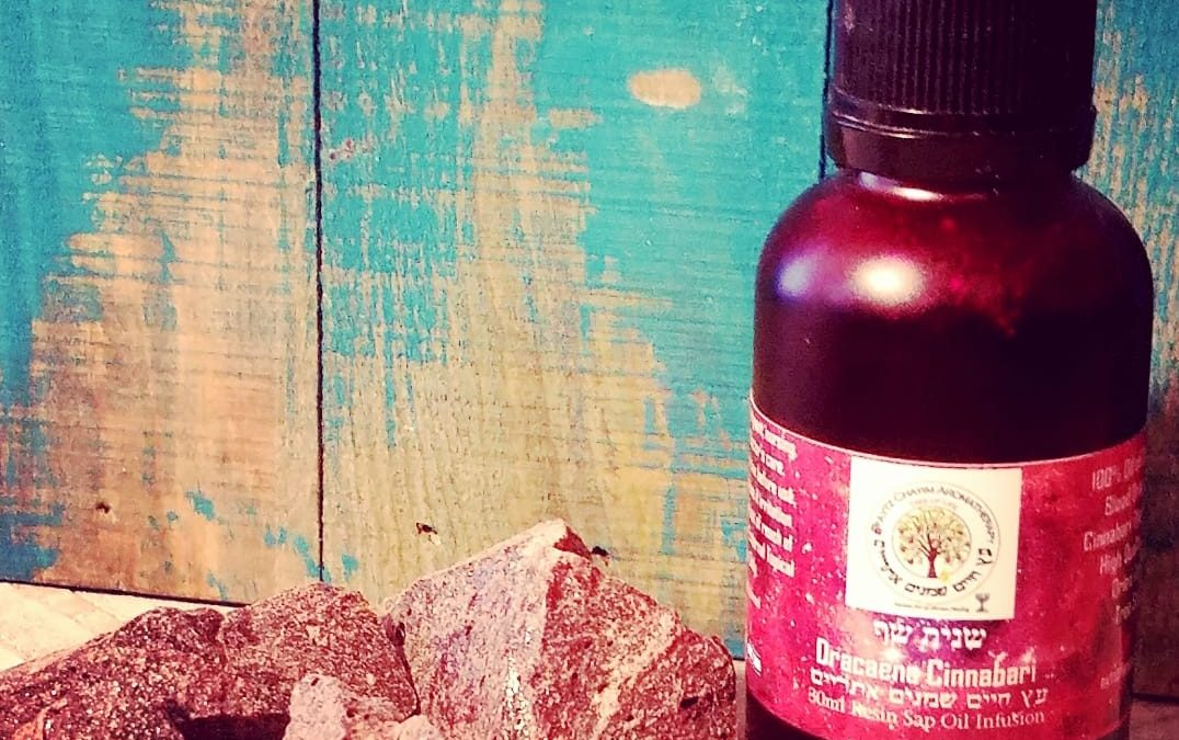 Dracaena cinnabari Infusion Oil 30ml known as Dragon's Blood and Scarlet Tree