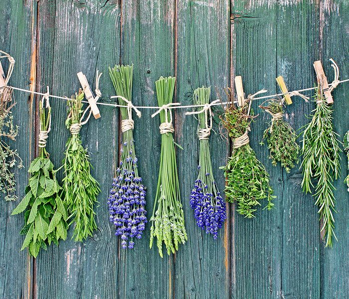 Herbs-drying