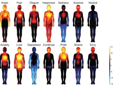 What-Emotions-get-stuck-in-your-Body